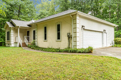Single Family Home For Sale: 244 Bacon Springs Lane