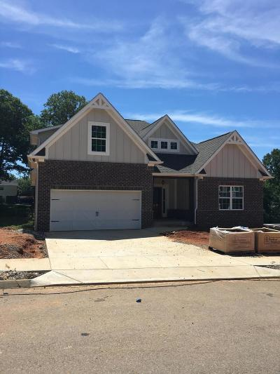 Knoxville Single Family Home For Sale: 868 Festival Lane