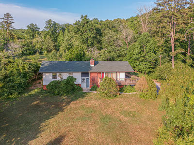 Kingston Single Family Home For Sale: 1441 Paint Rock Ferry Rd