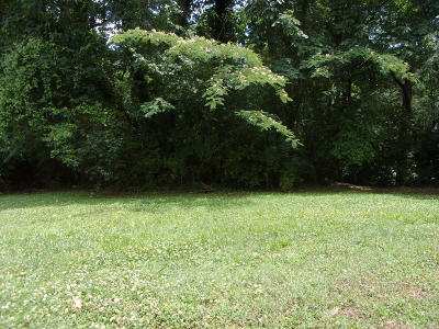 Clinton Residential Lots & Land For Sale: Lot #35 Orchard Drive