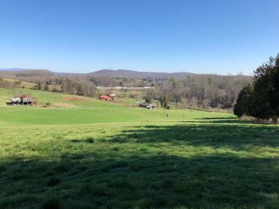 Lenoir City Residential Lots & Land Pending - Continue To Show: Paw Paw Plains Rd