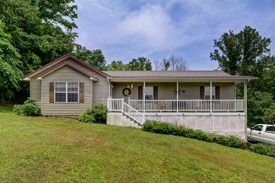 Caryville, Jacksboro, Lafollette, Rocky Top, Speedwell, Maynardville, Andersonville Single Family Home For Sale: 244 Mill Lane
