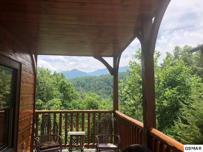 Sevier County Single Family Home For Sale: 828 Resort Way