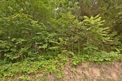 Sevierville Residential Lots & Land For Sale: Lot 39 Eagle Springs Rd