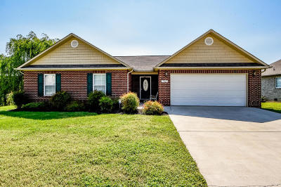 Maryville Single Family Home For Sale: 732 Kiefer Lane