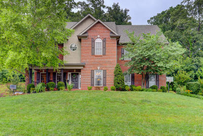 Knoxville Single Family Home For Sale: 223 Brooke Valley Blvd