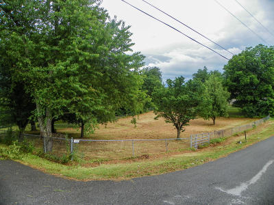 Pigeon Forge Residential Lots & Land For Sale: 1718 Christopher Avenue