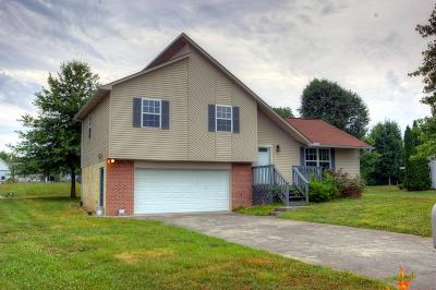 Sevierville Single Family Home For Sale: 1605 Country Meadows Drive