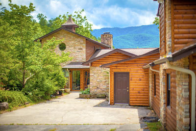 Sevier County Single Family Home For Sale: 314 Rodeo Drive
