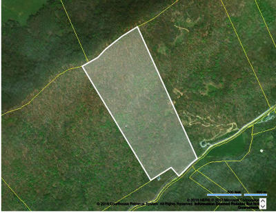 Claiborne County Residential Lots & Land For Sale: Snake Hollow Rd