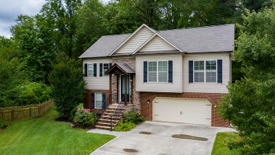 Powell Single Family Home For Sale: 7164 Grizzly Creek Lane