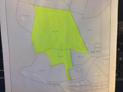Sevier County Residential Lots & Land For Sale: 0000 Newman Rd