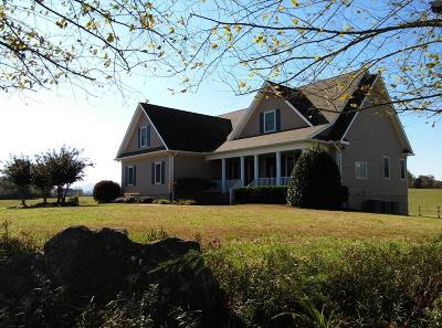 Blount County Single Family Home For Sale: 771 Majestic Mtns Blvd