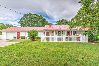 Andersonville, Maynardville, Norris Single Family Home For Sale: 418 Red Hill Rd
