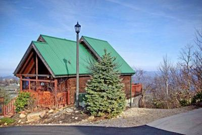 Sevier County Single Family Home For Sale: 1270 Bear Cub Way