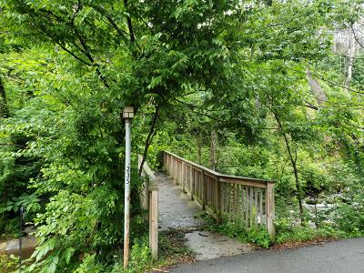 Residential Lots & Land For Sale: 235 Roaring Fork Rd