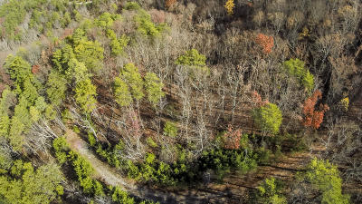 Maryville Residential Lots & Land For Sale: 724 Jewell Weed Way