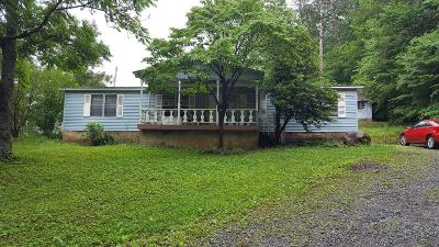 Sevier County Single Family Home For Sale: 1619 Somerset Lane