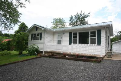 Sevierville Single Family Home For Sale: 951 Robinson Gap Rd