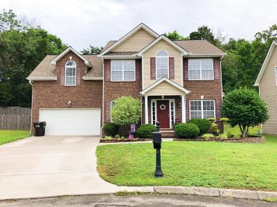 Knoxville Single Family Home For Sale: 3426 Grassy Pointe Lane