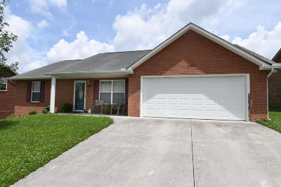 Knoxville Single Family Home For Sale: 6723 Casa Bella Drive