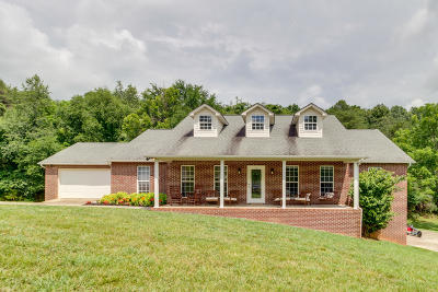 Single Family Home For Sale: 727 Haley Woods Drive