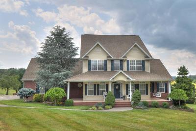 Sevierville Single Family Home For Sale: 1816 Edward Drive