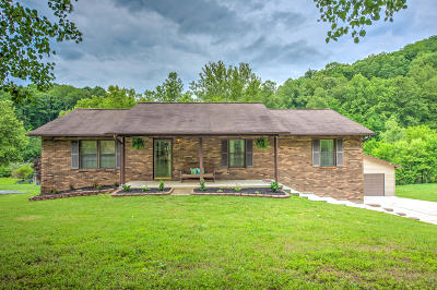 Oliver Springs Single Family Home For Sale: 380 Scandlyn Hollow Rd