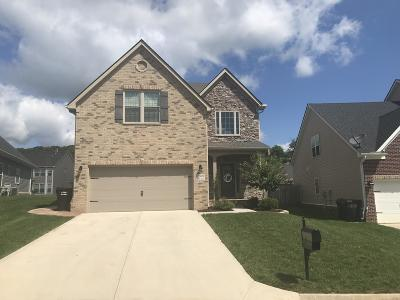 Knoxville Single Family Home For Sale: 12409 Turkey Crossing Lane