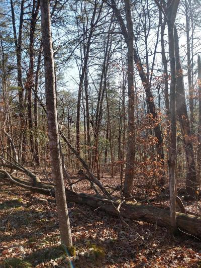Sevierville Residential Lots & Land For Sale: Saddle Brook Way