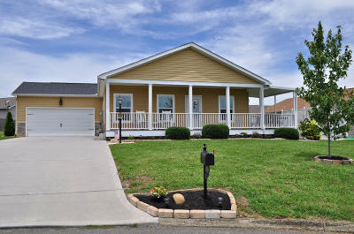 Sevier County Single Family Home For Sale: 1408 Abbie Rae Drive