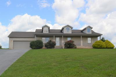 Sevier County Single Family Home For Sale: 724 Tuckahoe View Tr