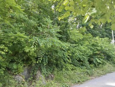 Maynardville Residential Lots & Land For Sale: Dogwood Trail Lots 135 & 137