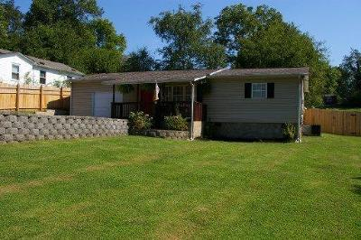 Blount County Single Family Home For Sale: 3552 Triple Oak St