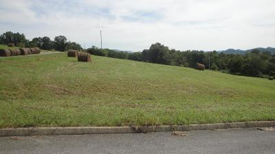 Anderson County, Campbell County, Claiborne County, Grainger County, Union County Residential Lots & Land For Sale: L 11 Elaine Drive