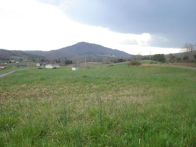 Claiborne County Residential Lots & Land For Sale: L 31 Pearlie Lane