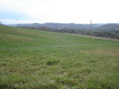 Claiborne County Residential Lots & Land For Sale: L 29 Parkey Way