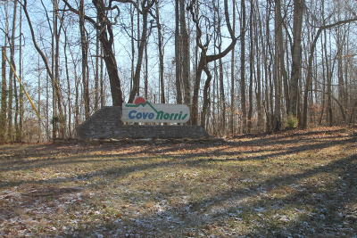 Cove Norris Residential Lots & Land For Sale