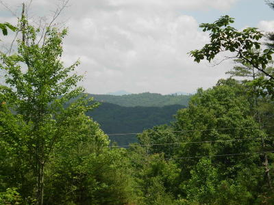 Monroe County Residential Lots & Land For Sale: Bullet Mountain Drive