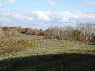Residential Lots & Land For Sale: 131.61 Ac McCormick Ridge Rd