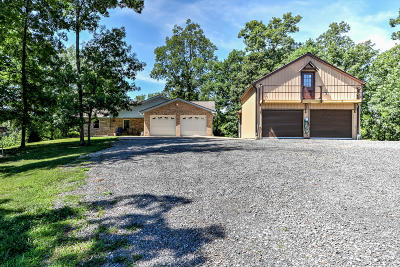 Single Family Home For Sale: 795 Bays Mountain Rd