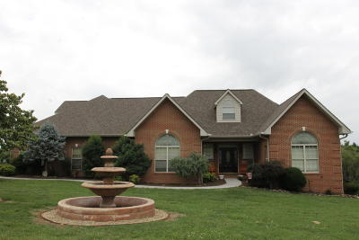 Sevier County Single Family Home For Sale: 603 Rumble Wood Lane