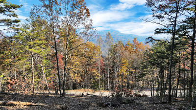 Blount County Residential Lots & Land For Sale: Tract 10 Look Rock Crest Drive