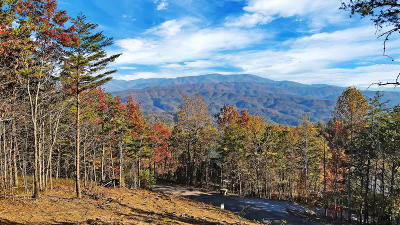 Blount County Residential Lots & Land For Sale: Tract 11 Look Rock Crest Drive