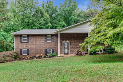 Anderson County Single Family Home For Sale: 116 Ridge Lane