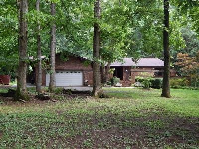 Knoxville Single Family Home For Sale: 520 S David Lane