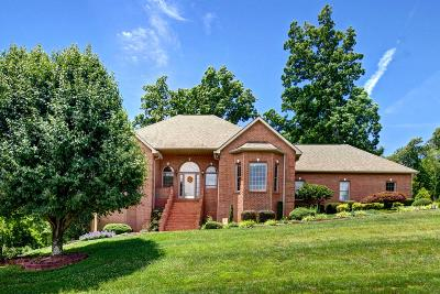 Lenoir City Single Family Home For Sale: 115 Westchester Court