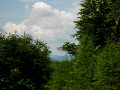 Monroe County Residential Lots & Land For Sale: Off Bullet Mountain Drive
