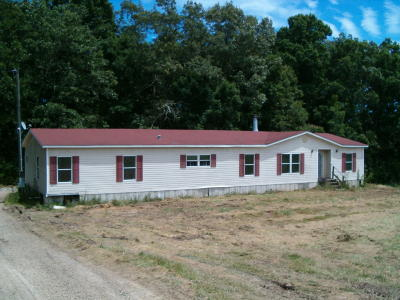 Loudon County Single Family Home For Sale: 205 Cook Drive