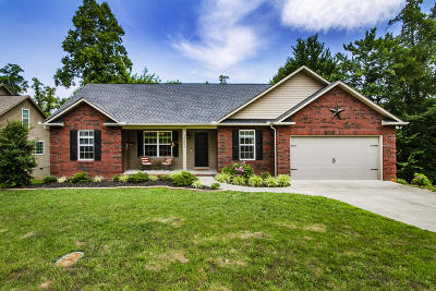 Knoxville Single Family Home For Sale: 3852 High View Lane